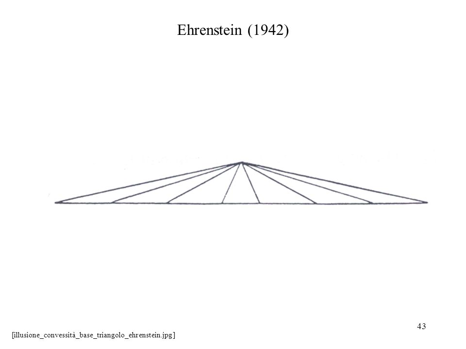 Ehrenstein (1942) [illusione_convessità_base_triangolo_ehrenstein.jpg]